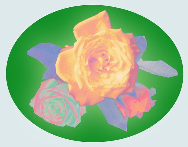 2D Digital Art - Roses 4 U