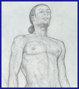 Nudes – Modalevivant